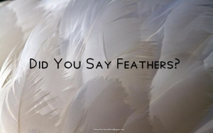 CoverYouWithHisFeathers