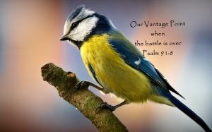 Psalm 91_8 Our vantage point
