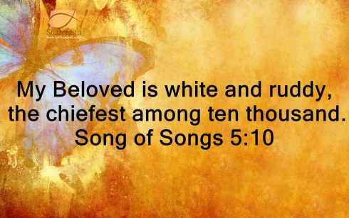 Song of Songs 5_10b