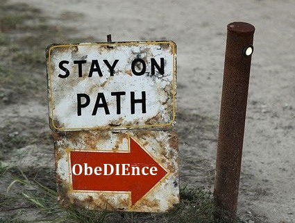 Obedience3